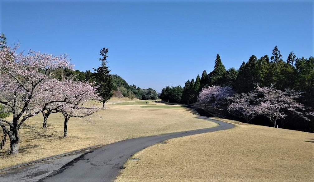 千葉県・ムーンレイクゴルフクラブ鶴舞コース(セントレジャーGC千葉)