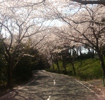 千葉県・千葉桜の里ゴルフクラブ