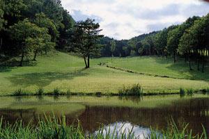 長野県・アルプスグリーン
